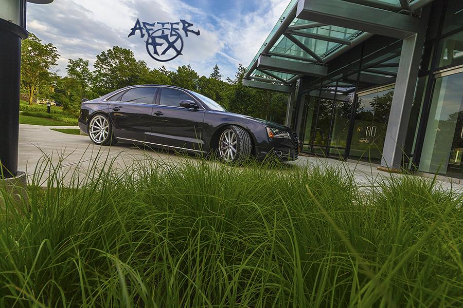 Audi 8L